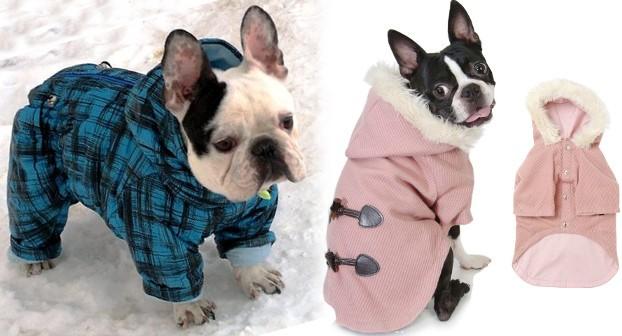 Зимняя одежда для французского бульдога