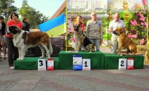 Выставки собак в Украине в 2016 году