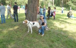 Русская гончая собака фото