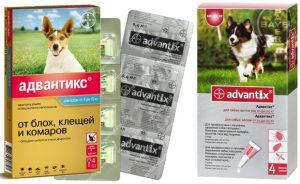 Адвантикс для собак: инструкция по применению