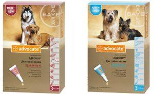 Адвокат капли для собак и кошек на холку: инструкция и отзывы.
