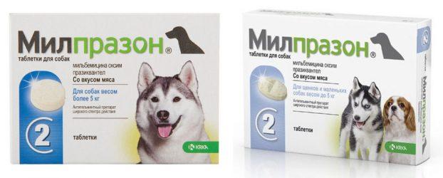 Милпразон для собак инструкция и цена