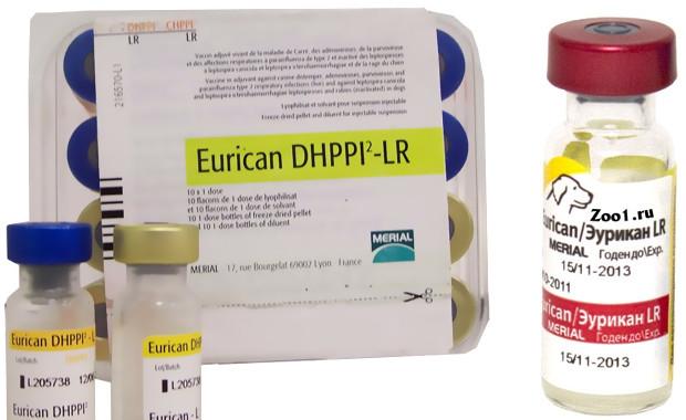 Прививка эурикан для собак