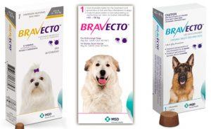 Бравекто для собак - инструкция по применению