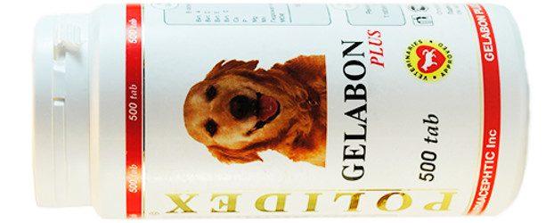 Полидекс Гелабон для собак инструкция, отзывы, цена
