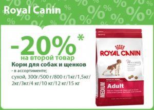 Скидка на корм для собак Роял Канин