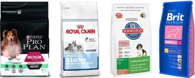Рейтинг премиум кормов для собак