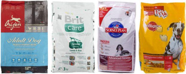 Сухой корм для собак - какой лучше