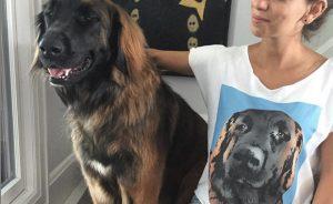 Футболка с фото вашей собаки
