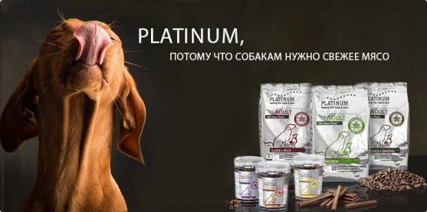 Корм для собак Platinum