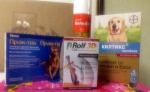 Список эффективных средств от клещей для собак